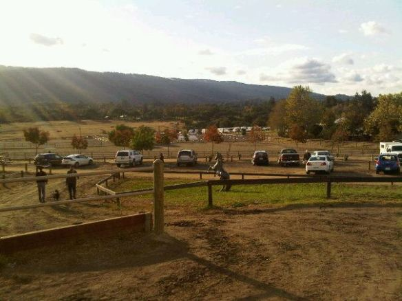 A photo of the Horse Park of Woodside