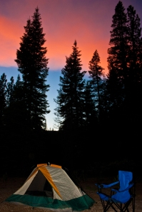 Chapman Creek Campground near Calpine