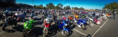 A sea of bikes at the show